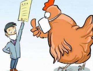 H7N9疫情高发季来了!出现两种症状要注意